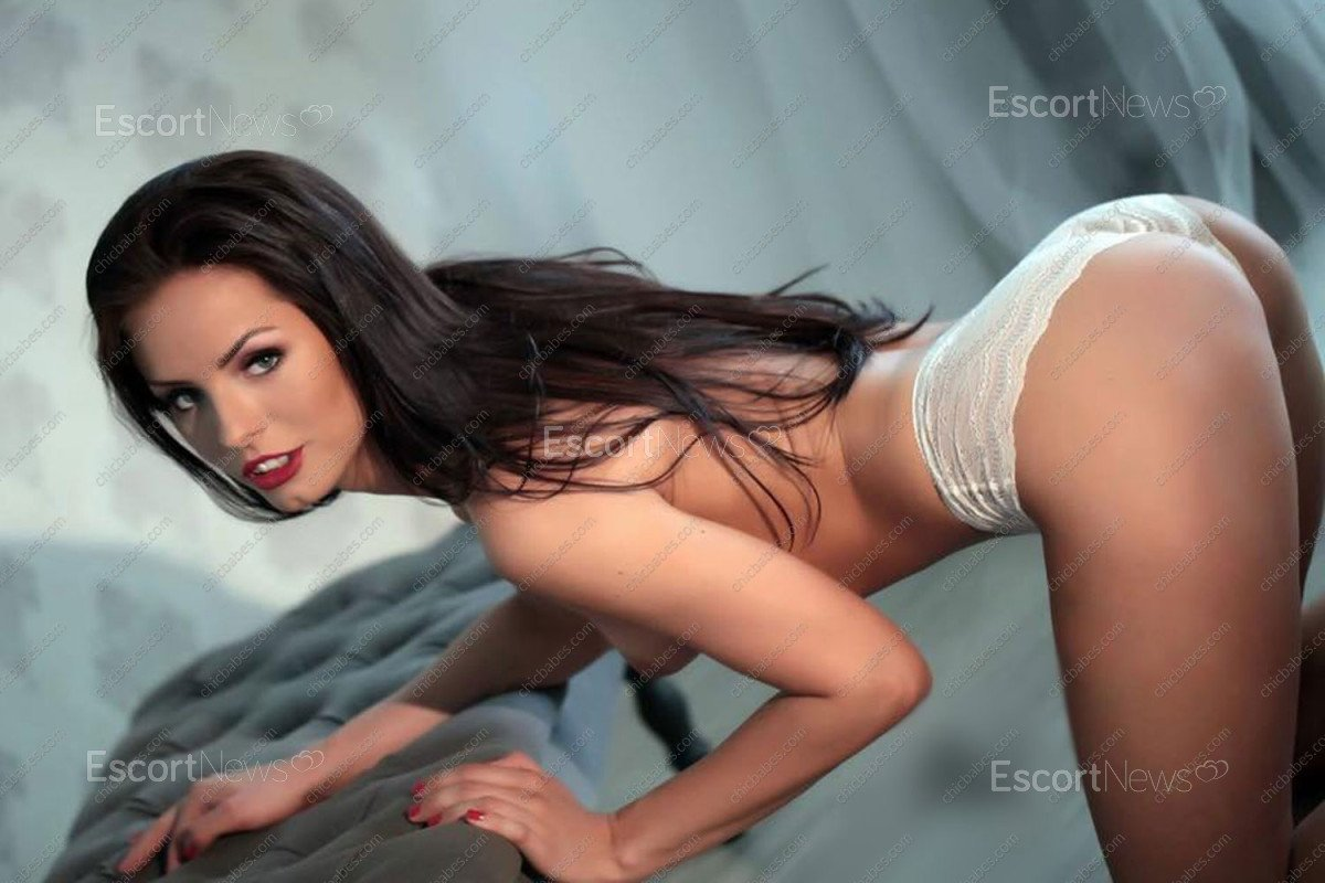 escorts escort services jpg 1200x900